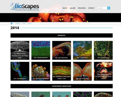 bioscapes-competition